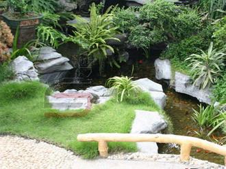 Thành phần sống động như hồ cá, hay cây hình kim tự tháp... kích thích sinh khí