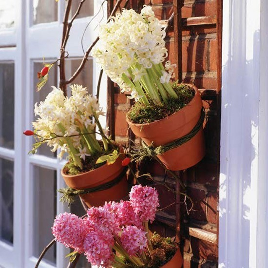 Sử dụng hoa lá để sở hữu một không gian xanh