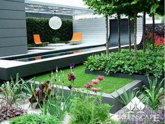 Cây kiểng và hoa giúp mang sinh khí cho sân vườn