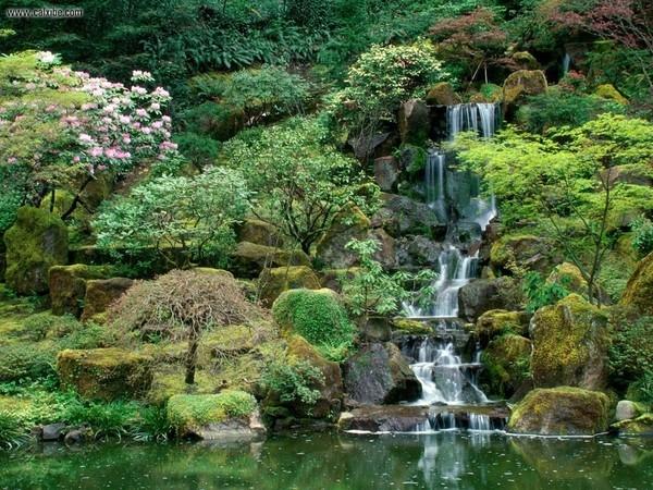 Những thiết kế hòn non bộ nhỏ bên trong không gian của vườn chính sẽ mang đến cho bạn không cảnh tượng thiên nhiên tuyệt vời.